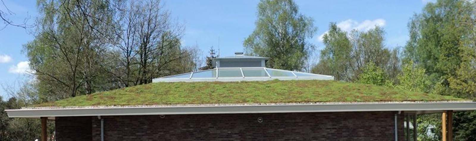 duurzaam-bouwen-groene-daken